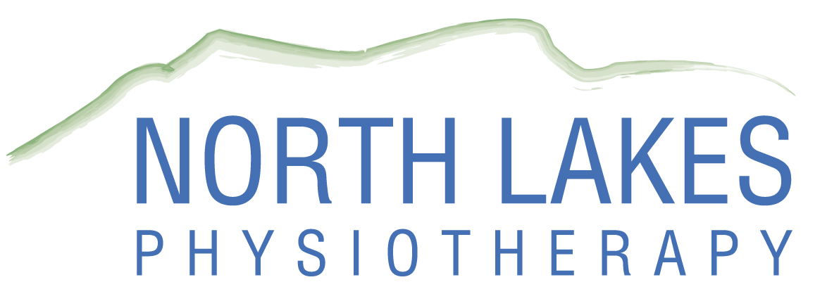 northlakesphysio.com
